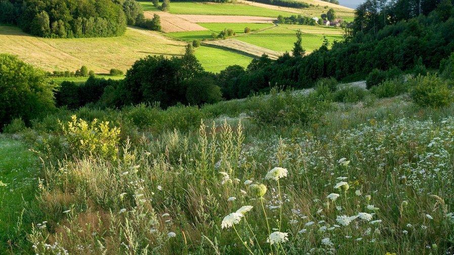 Piękna i aktywna wieś Gminy Kłodzko III przegląd-wyniki